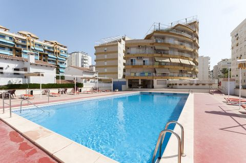 This beautiful apartment is located 500 metres away from the beach of Gandía, it offers a great shared pool and it is perfect for 2-4 people. Our guests will be delighted with the closeness of the beach to this fantastic residential of apartments. Yo...