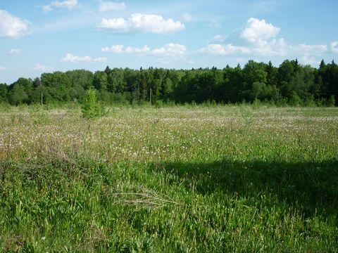 Продается земельный участок Клинский район, дер. Троицкое, 75 км. от МКАД. Участок 14 соток, электричество по границе участка (15кВа), подъезд круглый год. Поблизости река и лесной массив. Стоимость: 45 000руб./сотка