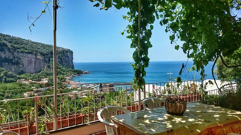 The villa it's located in a park overlooking the sea from the cliffs, from which you can reach beaches and restaurants using a typical path. The villa has a large garden with lemon trees and olive trees and a terrace covered by a vineyard. You can en...