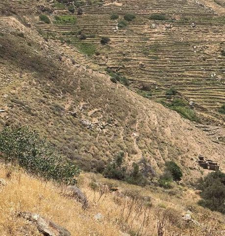 SERIFOS. For sale a plot of 13,687 sq.m., outside the city plan, buildable, with ruined buildings inside, 2 km from the village of Galanis, at Moutoula Serifou. The nearest beach is Platis Gialos which is at 5km. A road passes over the plot. Price 80...