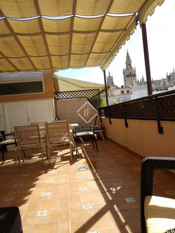 Fantastic duplex penthouse for rent in a privileged area of the centre of Seville, with all services and monuments nearby and with beautiful views of the cathedral and the Giralda. The penthouse has two double bedrooms, two bathrooms, a living-dining...