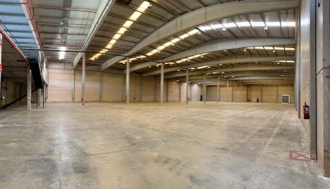 Logistic Warehouse for rent in Fontanar, with 23,652 m2 and Loading Dock.