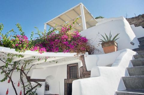 This beautiful villa, built in 2015, with a total area of 80 square meters, is composed of an open space kitchen, living-dining area and a fully equipped kitchen, 2 bedrooms with double beds and vaulted ceilings and 2 private bathrooms. Outside you c...