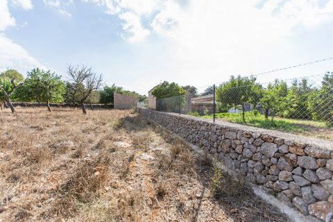 Little house with large flat land in a protected area in the vicinity of Costitx. The property is located on the outskirts of the village of Costitx, near Sencelles, Lloret de Vista Alegre, Sineu or Inca. The land is partly wooded with different kind...