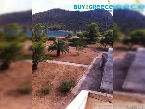 B1005 - For Sale Hotel, Korinthos- Saronikos 550sq.m ,Ground floor, 48 rooms, price: 1.550.000€::Near the Sea - Walkup Price negotiating is possible: Yes Year built: 1988 Living space: 550 m2 Price per meter: 2818 €⁄m2 The area of the land/lot: 2000 ...