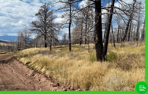 Located in Fort Garland. Explore the wonders of Costilla County and experience different adventures when you settle in this 2-acre corner property in Costilla County, Colorado. Escape the big city and enjoy everything that nature has to offer! Fort G...