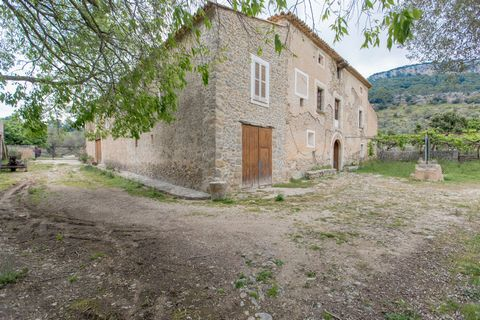 Large 18th century finca to be reformed located in an idyllic location on the outskirts of Puigpunyent, with spectacular views of the Sierra de Tramuntana mountains and the valley of Puigpunyent. The estate is 1500m2 big and and has 98000m2 of land. ...