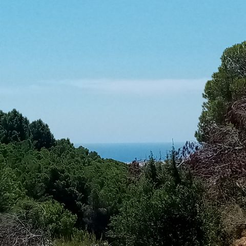 plot in the popular and quiet urbanization of monte rico near the town of altea la vella. the land offers a wonderful view over the old town of altea the green valley and the sea. the measurements of the plot allow a constructed area of up to 5...