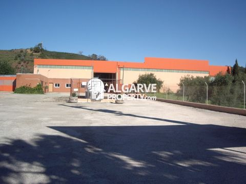 Located in Tavira. 2,520 sq.m. Warehouse located in Santa Catarina da Fonte do Bispo. It has mains water and own borehole. Equipped with propane gas tank for 22,000 liters and own processing station of 250 KVA. It has an high ceiling of 7 m. Good acc...
