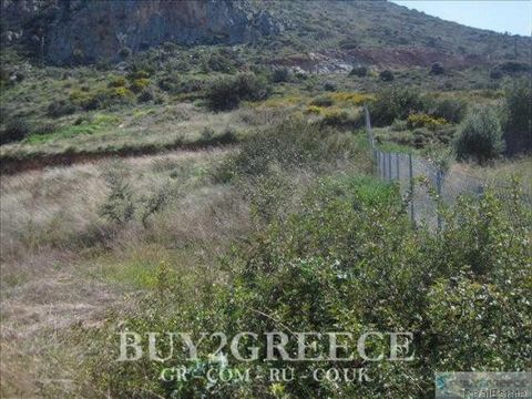 B841 - FOR SALE PLOT OF 2018sqm, EVEN, BUILDABLE, BUILDING COEFFICIENT=10%, SLOPING, WITH PANORAMIC SEA VIEW, IN SETTLEMENT ZONE, 1km FROM THE BEACH, HERSONISSOS, HERAKLION - CRETE::Αγορές/Restaurants - Facade - View - Not in City Plan - Walkup - Set...
