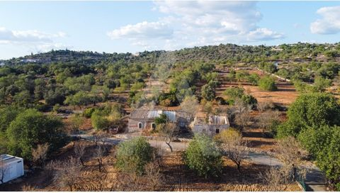 Land with a total area of 2539 m2 and a ruin of 246 m2, to rebuild and with the possibility of expanding. Situated on the outskirts of Boliqueime, in a quiet area, close to commerce and services, a 15-minute drive from the beach and the vilamoura gol...
