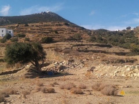 For sale a land of 7000sq.m. on the cycladic island Sifnos in Greece. The price is 500.000 euro The land has its own road.There are waterlines inside and electric- and phoneline near. The land is situated 2 km. from the beach and has a local busstop ...