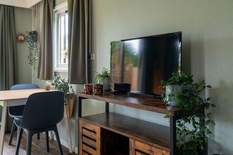 This cozy chalet for 4 people is located on the island of Goeree-Overflakkee, which is surrounded by the North Sea. The holiday home is located in a quiet park just outside the historic town of Goedereede. The Goedereede supermarket is next to the pa...