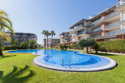Modern apartment in Oliva Nova with capaciti for 2 up to 4 people. It is air-conditioned and has access to a great shared pool. The exterior area is fabulous thanks to the great shared chlorine pool that sizes 30 x 15 metres and has depth from 0.5 to...