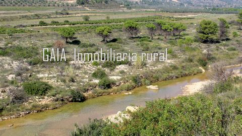 The land has 1.7 hectares (17,000 m2) and the quality of the land is suitable for all crops that the buyer wishes to plant. Currently there are a few olive trees. Irrigation water rights by irrigation ditch. There is a rustic construction, or Mas, o...