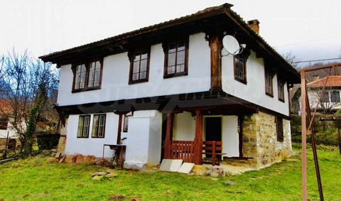 SUPER PROPERTIES Agency: ... present for sale a unique Renaissance house located 5 km from the town of Varna. Plachkovtsi and 10 km from the town of Plachkovtsi Tryavna with wonderful nature and climate. It consists of a yard with an area of 650 sq.m...
