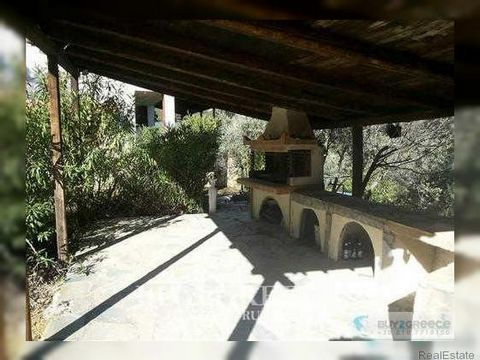 B734 - CORINTH, DERVENI, FOR SALE HOUSE 120m2, IN PLOT 4000m2 ( 50 OLIVE TREES), BARBEQUE 40m2 AND WOOD STOVE, DISTANCE FROM THE SEA (5 MINUTES)::Water supply - View - Not in City Plan - Newly Built - Internal Stairs - Fireplace - Charcoal Grill - Ba...