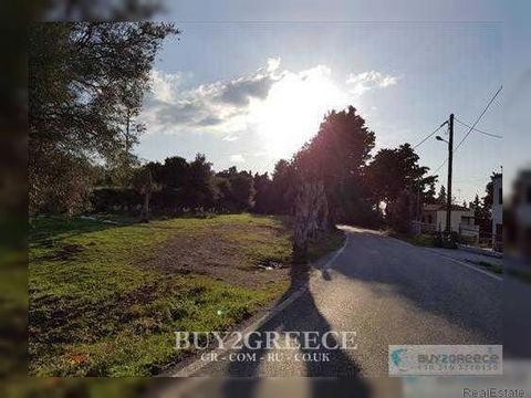 849 - FOR SALE 6 PLOTS WITH 3 STONE -BUILT HOMES, PANORAMIC VIEW TO AEGEAN SEA, NATURAL BEAUTY, NEXT TO FOREST, ZIAS REGION, ASOMATOS - KOS (DODECANNESE) ::View - Walkup Price negotiating is possible: Yes Listing type: Land Living space: 7769 m2 Pric...
