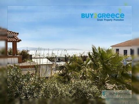 1204-For sale hotel in Skala Kallonis ,Lesbos ,Greece , 189 sq.m .It comprises of 8 studios ,9 wc ,is renovated , fully furnished ,has reception .It is 60m away from the sea ,44km from the city and 50km from the airport .::Walkup - Near the Sea - Εκκ...
